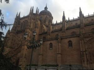 La Catedral de la Asunción de la Virgen (ou Catedral Nueva)
